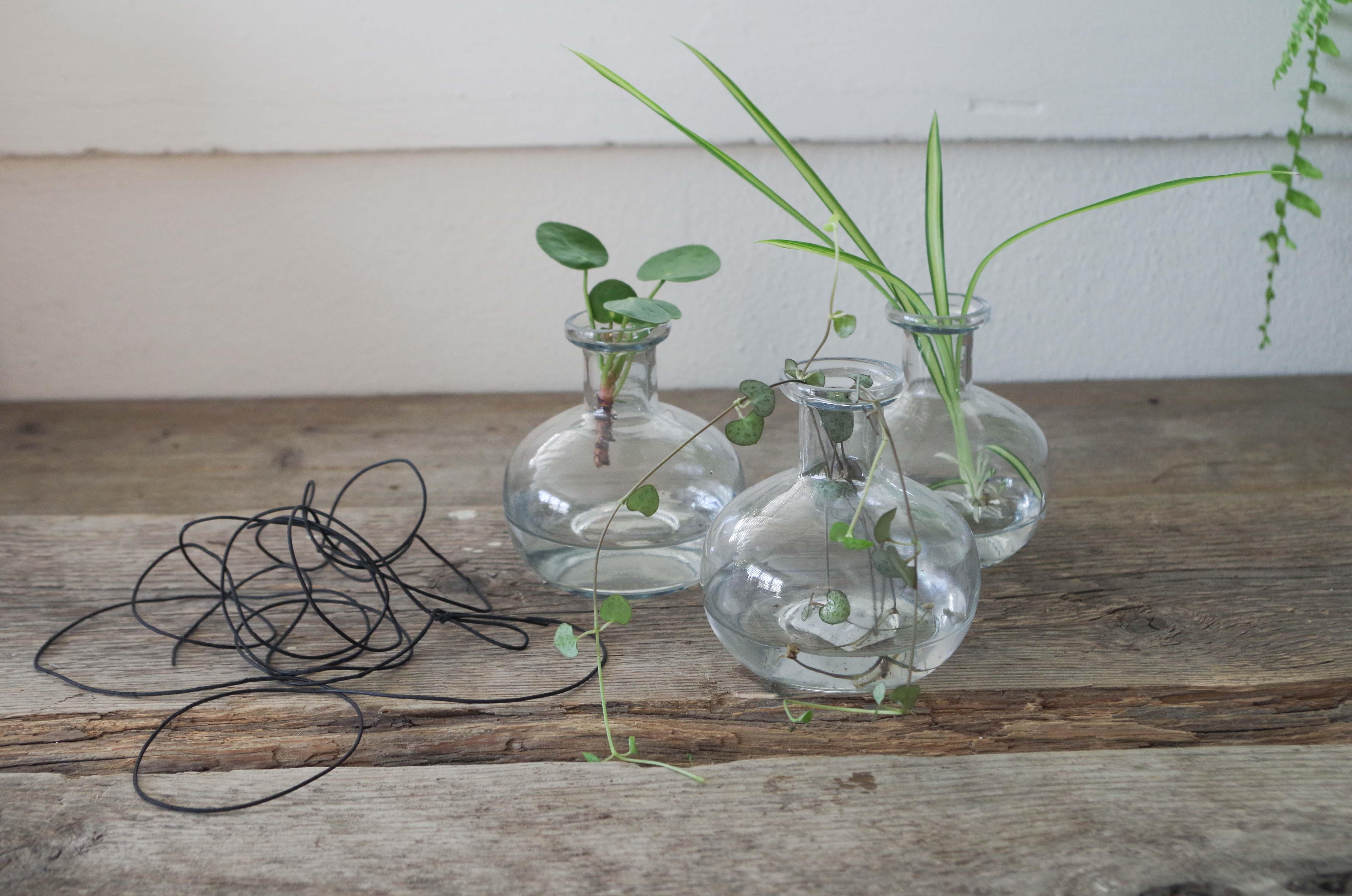 DIY – smarta sticklingvaser för upphängning