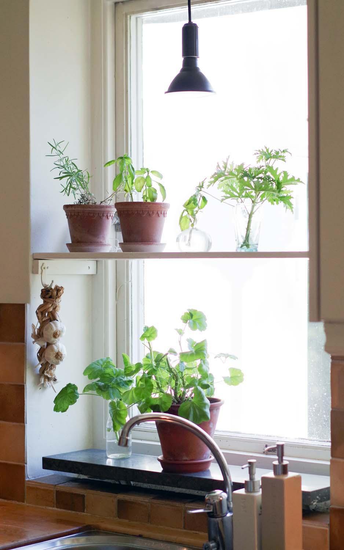 Växtbelysning