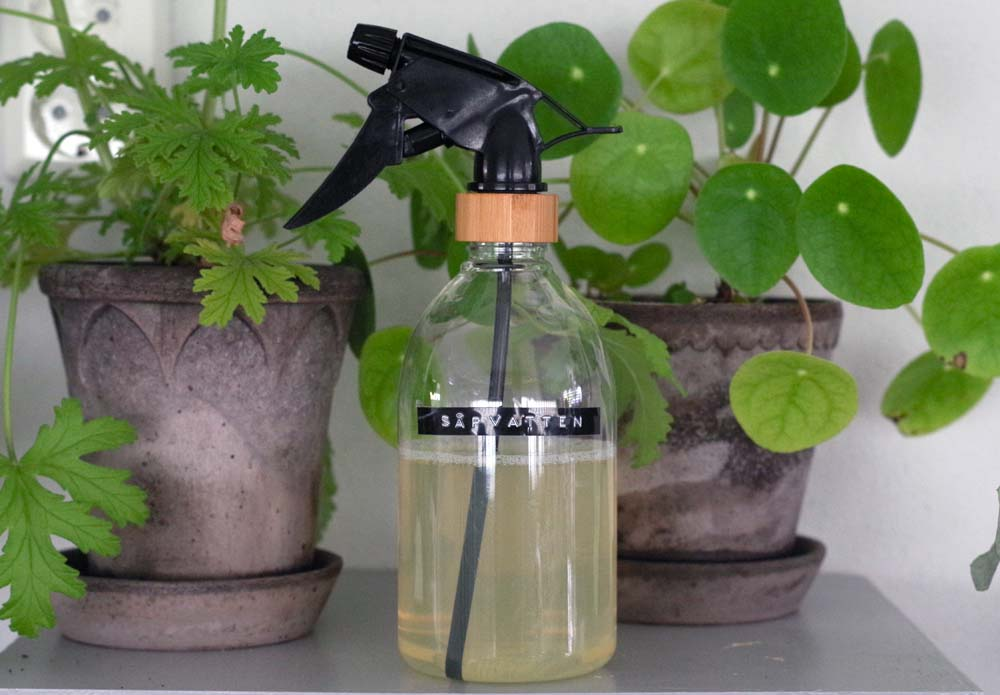 Tillverka såpvatten mot ohyra