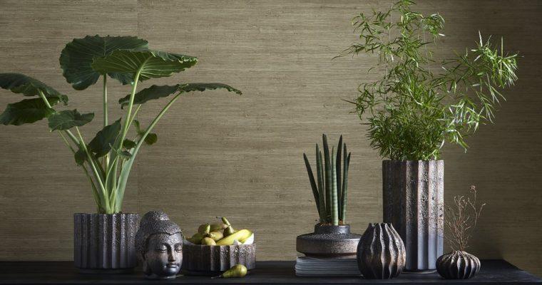 Bygg stilleben med växter